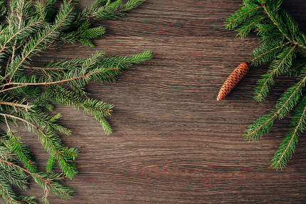 Decoration of Christmas Tree Branches on a Brown Background with Copy Space