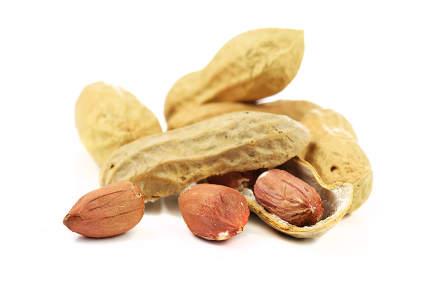 dried peanuts