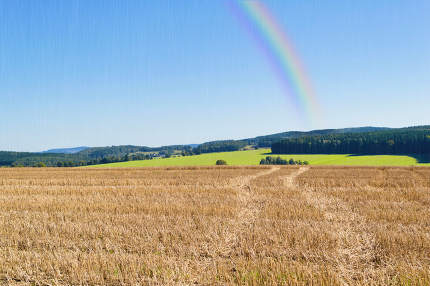 field with a rainbow in the autumn