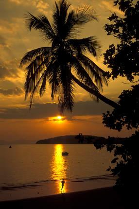The Sunset at the Hat Phra Nang Beach at Railay near Ao Nang outside of the City of Krabi on the Andaman Sea in the south of Thailand.    Thailand, Krabi, April, 2001