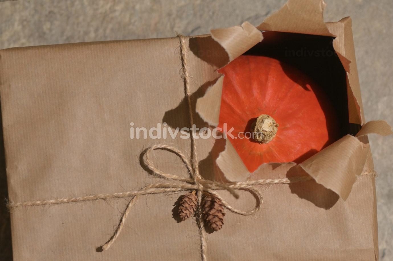 Autumn Pumpkin with Open Present Gift Box