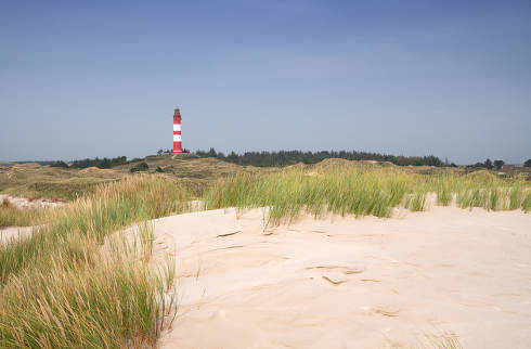 Panoramic image of the dunes of Amrum with the lighthouse, Germany