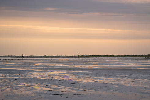 the coastal landscape of Amrum at sunset, North Sea, Germany