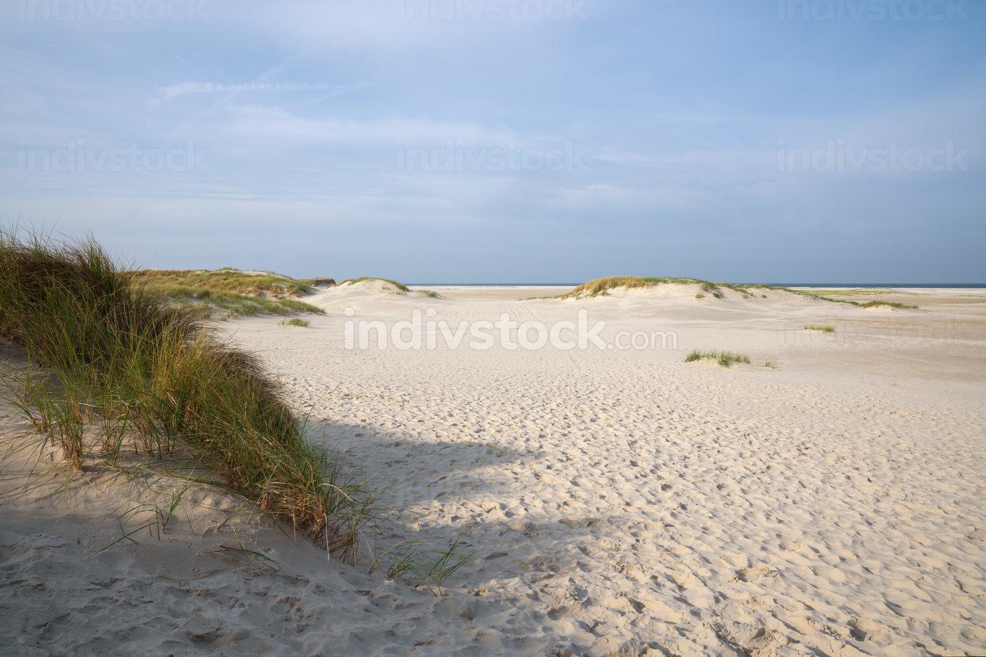Beach at the coastline of Amrum, North Frisia, Germany