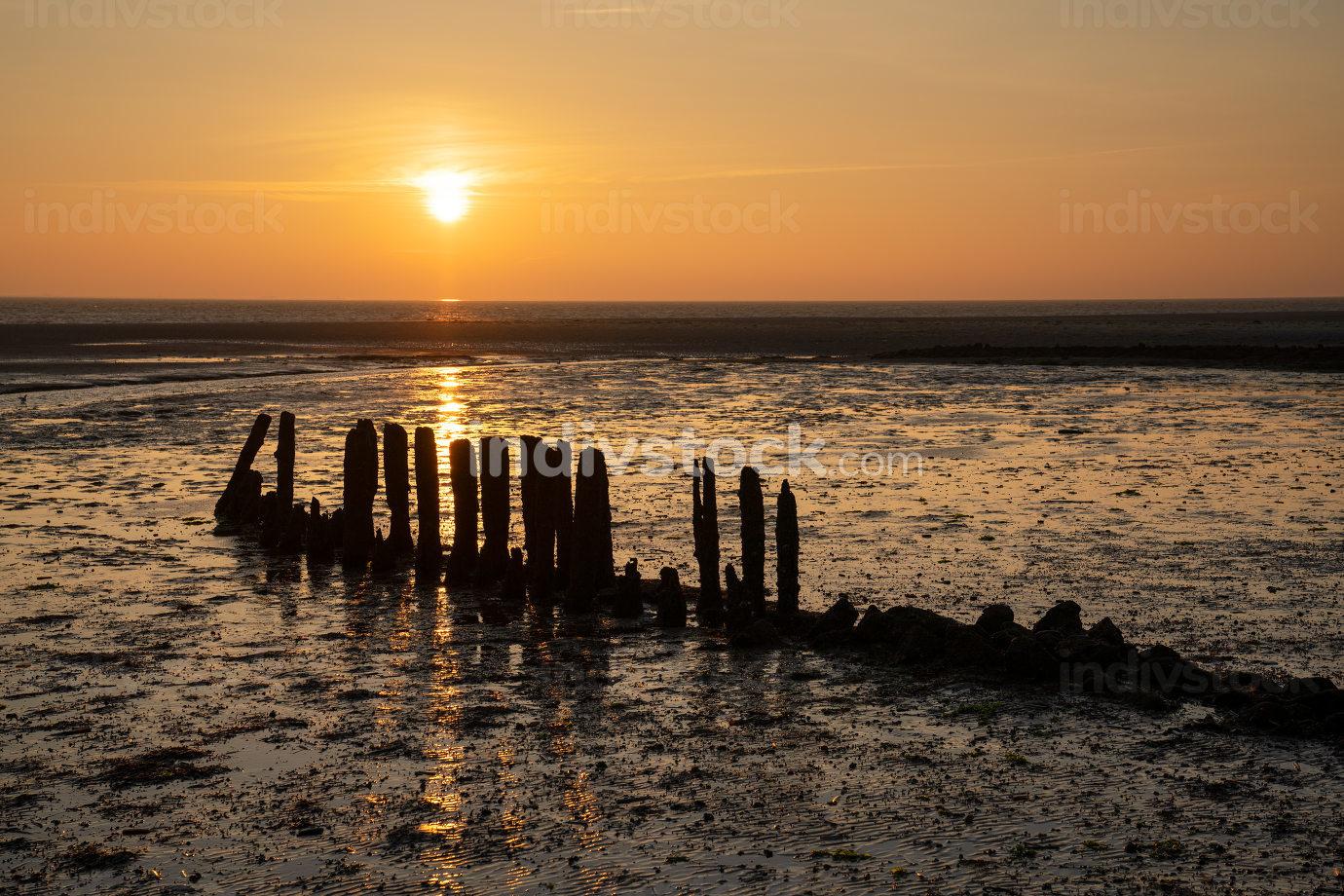 the coastal landscape of Amrum at sunrise, North Sea, Germany
