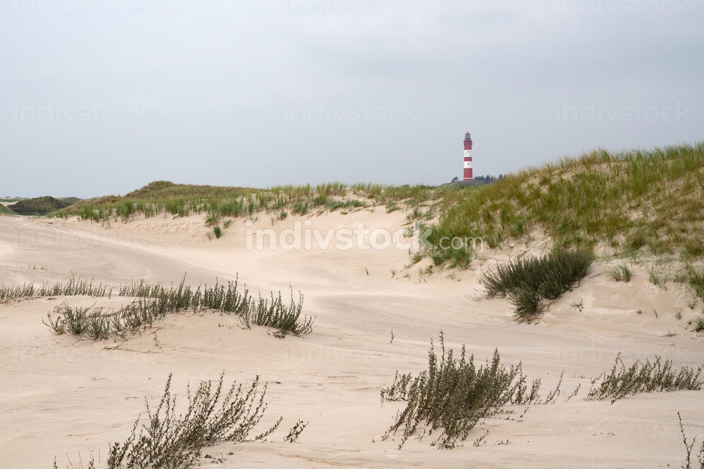 the dunes of Amrum with the lighthouse, Germany