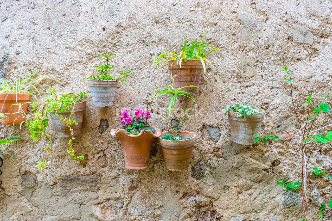vacation, flowerpots street in the tourist island of Mallorca, V