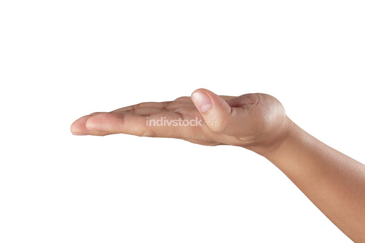 Empty open hand isolated